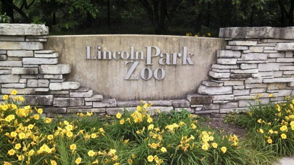 chicago-lincoln-park-zoo.jpg